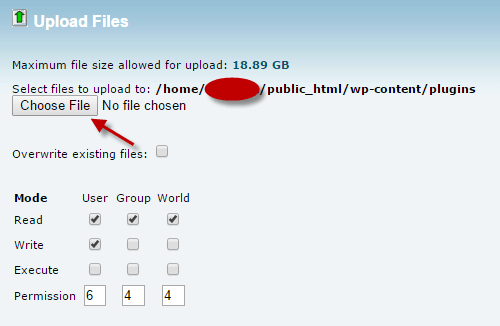 upload file in cPanel