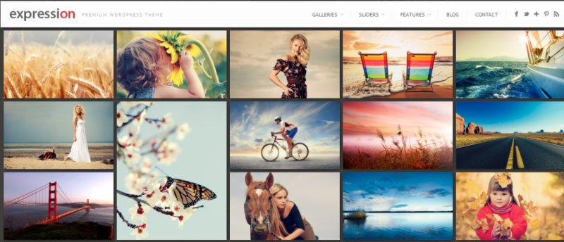 expression - Best Photography WordPress Themes