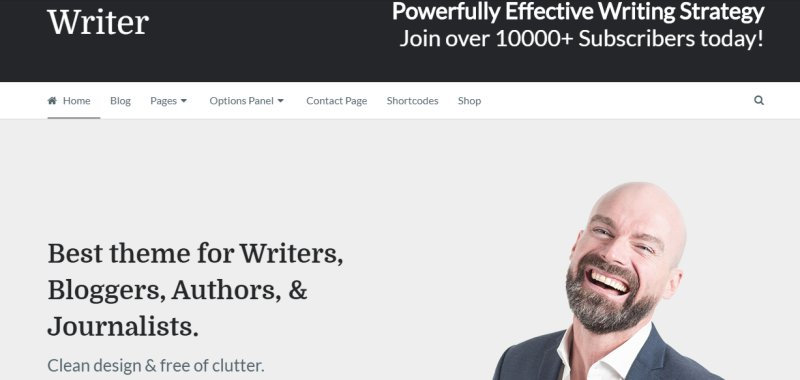 writer - best wordpress portfolio theme